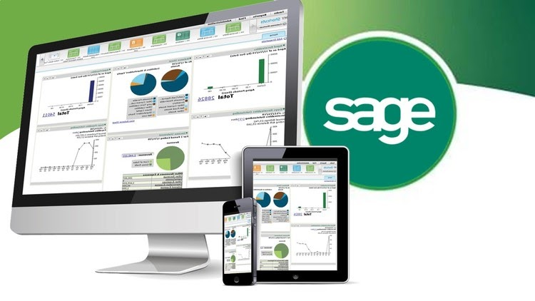 Types of Companies That Go For Sage